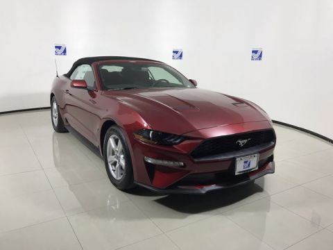 New 2019 Ford Mustang EcoBoost Convertible